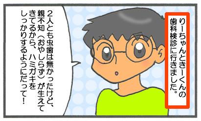 f:id:toshigoto:20161223135705j:plain