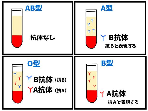 ABO血液型とRh血液型のはなし・献血に行けるのは健康の証です。