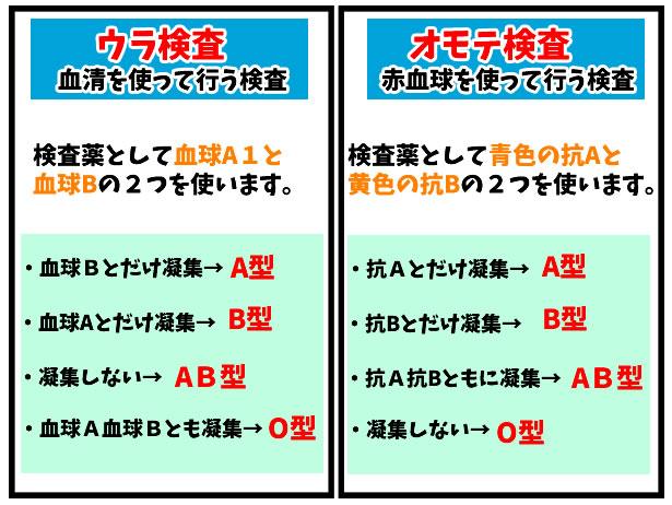 ABO血液型とRh血液型のはなし・献血に行けるのは健康の証です。 | と ...